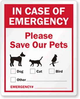 protecting-pets-in-natural-disaster